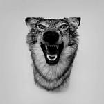 Yelawolf - Love Story